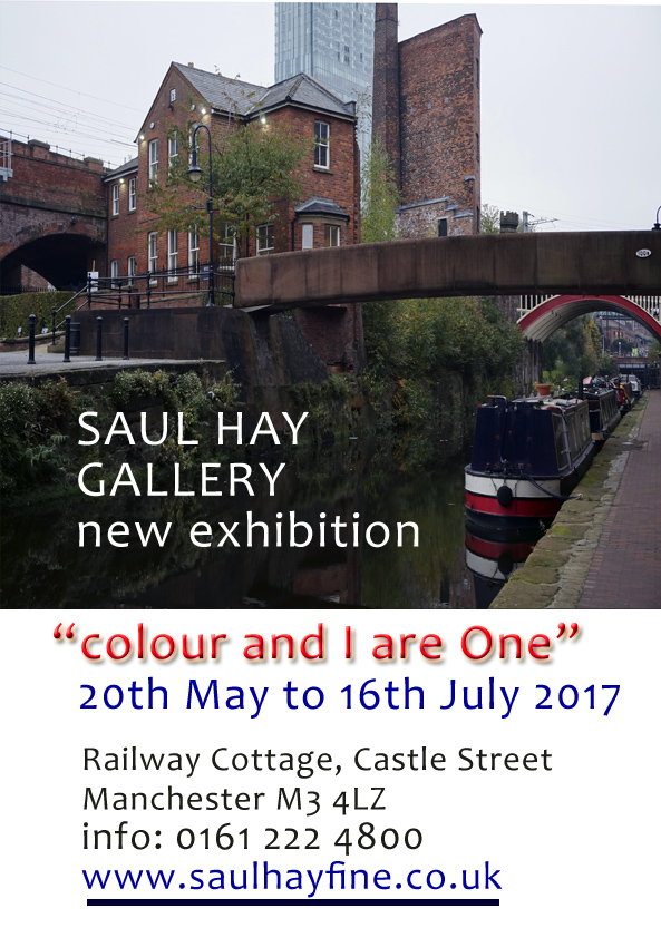 Saul Hay-advert
